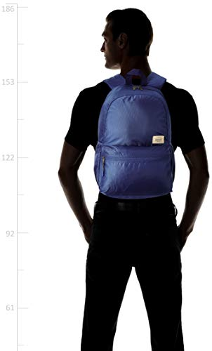 American Tourister Copa 23 Ltrs Blue Casual Backpack (FU9 (0) 01 001)