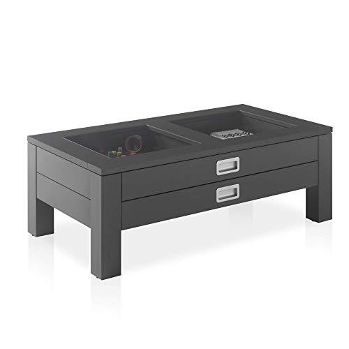 FLORIAN Tavolino grigio opaco con inserti in vetro - spazioso tavolino con due cassetti per la tua zona giorno - 110 x 39 x 60 cm