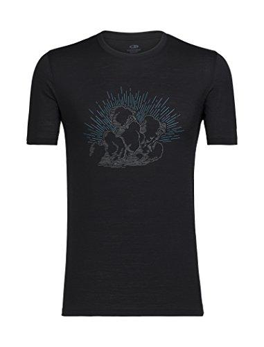 Icebreaker Merino Tech Lite T-Shirt voor heren W/Graphic, Merinoswol