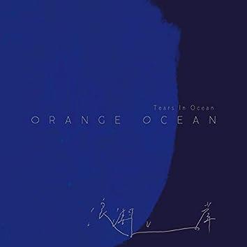 浪潮上岸(Tears In Ocean)