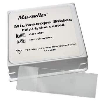 Masterflex Adhesive Coated Microscope Slide, Poly-l-lysine; 144/PK