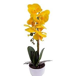 Imiee Phaleanopsis Arrangement with Vase Decorative Artificial Orchid Flower Bonsai (Orange)