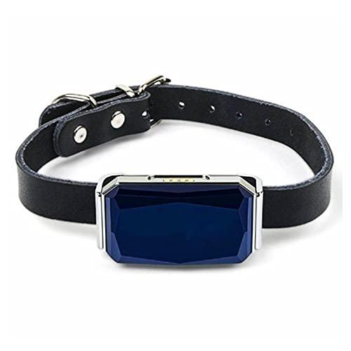 Rastreador GPS Inteligente Mini Collar De Posicionamiento De Mascotas para Perros Y Gatos Posicionamiento Geofence SOS Rastreador En Tiempo Real Anti-Perdido Seguimiento,Azul