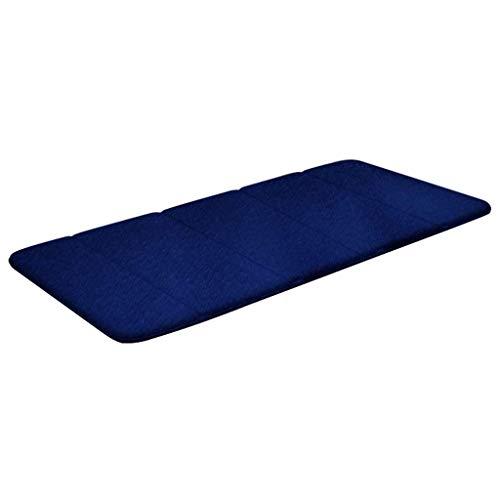 AISHANG Almohadilla Transpirable de Terciopelo 100% visón Cojín para Tumbona Sillas reclinables reclinables Jardín al Aire Libre Relajante para Patio con cojín para Viajes de Vacaciones (Color: Azul