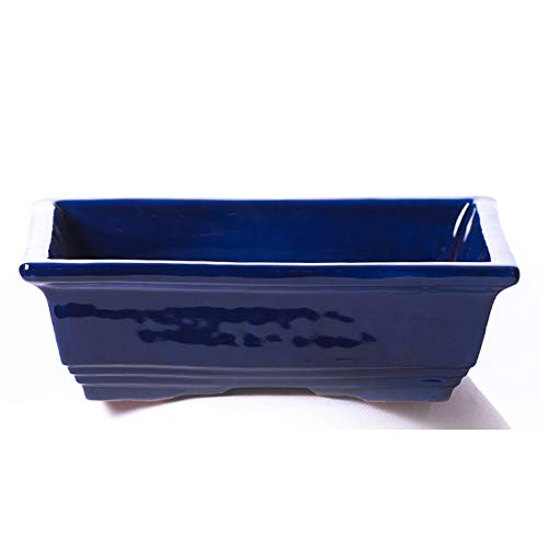 ALFAREROS DAMIAN CANOVAS Maceta para Bonsai DE Barro Y ESMATADA EN Color Azul Cobalto. Medidas 22X16X8 CM.Modelo Tokio. con TU Compra TE REGALAMOS EL Plato.