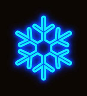 SUNNY SHOWER 2D LED Snowflake Shaped Light 120V Hanging Led String Light for Garden Outdoor Decoration Waterproof Lamp Light, Blue Light, 1 Pack
