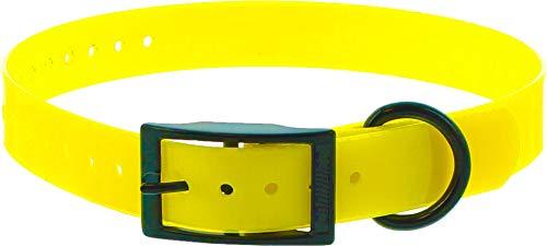 Collar Perro Amarillo Poliuretano 60cm hebilla doble, gravable (ver las detalles)