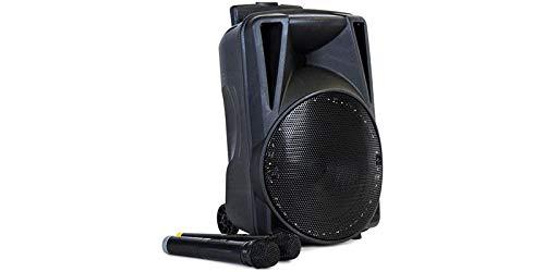 Eltax Voyager BT 10 Negro - Altavoces portátiles (De 2 vías, 25 cm, 40-20000 Hz, 4 Ω, 100 W, Inalámbrico y alámbrico)