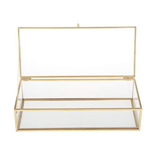 T TOOYFUL Schmuckschatulle Glas Transparente Glaskasten rechteckiges Glas Deckel Terrarium Box für Ringe, Ohrringe, Juwelen und Armbanduhr