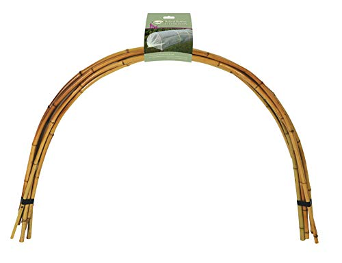 Haxnicks NB060101 X6 Natural Bamboo Tunnel Hoops, Green, 100x61x61 cm