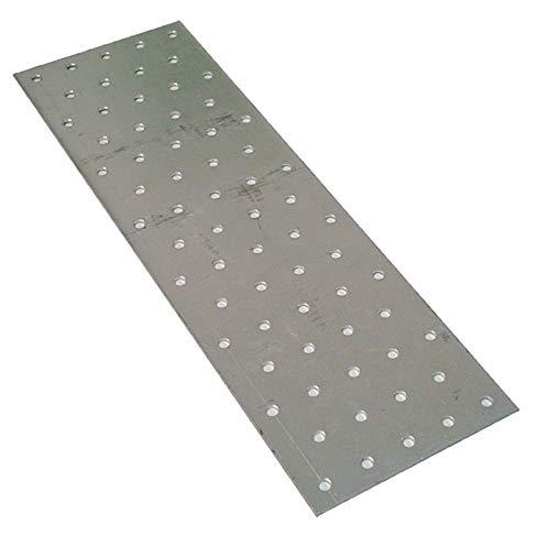 10 Stück FMG Lochplatten 100x300 mm