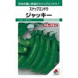 スナップエンドウ 種 【 ジャッキー 】 種子 小袋(約20ml)