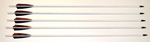 Holzpfeile Pfeile aus Kiefernholz weiß mit Naturfedern 5/16 bis 30 - 40 lbs