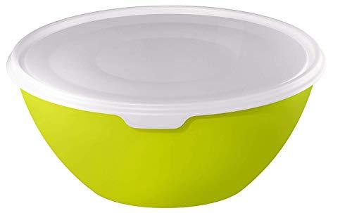 Rotho Caruba, Tazón 3l con tapa, Plástico PP sin BPA, verde, transparente, 3l 24.0 x 24.0 x 11.6 cm