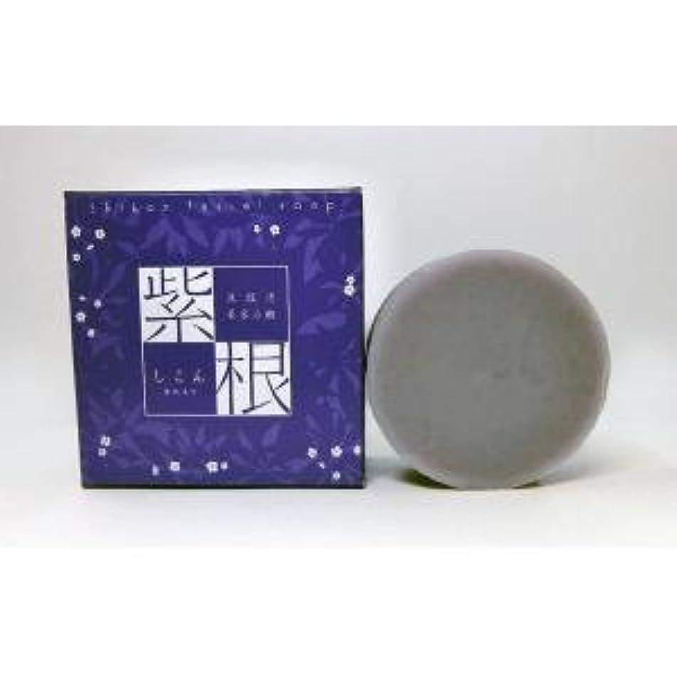 検出器アレルギー性ロードされた紫根石鹸 100g×5個セット