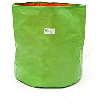 BIO Blooms Agro India PVT LTD 100% UV Treated Plastic Grow Bag for Terrace Gardening - Grow Vegetables, Fruits, Onion & Other Leafy Vegetables, 24 x 24 inch - Green