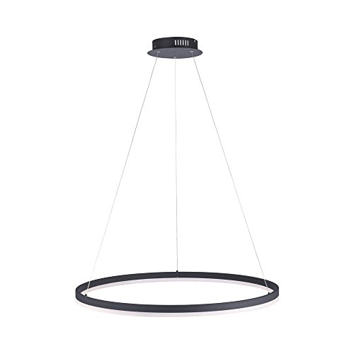 LED Pendelleuchte Ø 80cm TITUS 2382-13 Paul Neuhaus