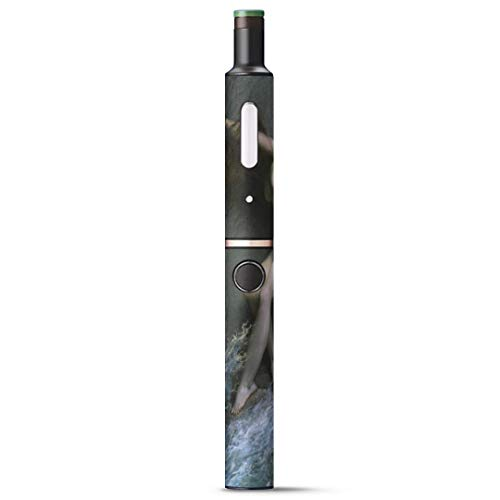 igsticker Ploom TECH + Plus プラス 専用 デザインスキンシール プルームテック カバー ケース 保護 フィルム ステッカー 003215 クール 写真・風景 人物 絵画 イラスト