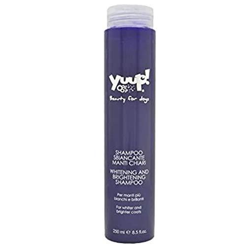Shampoo Yuup manti-Blanqueador manti más claros y blanca brillantes para perros