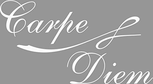 Exklusivpro Wandtattoo Carpe Diem Zitat Spruch Worte inkl. Swarovski u. Rakel (wcd02 weiß) 80 x 44 cm mit Farb- u. Größenauswahl