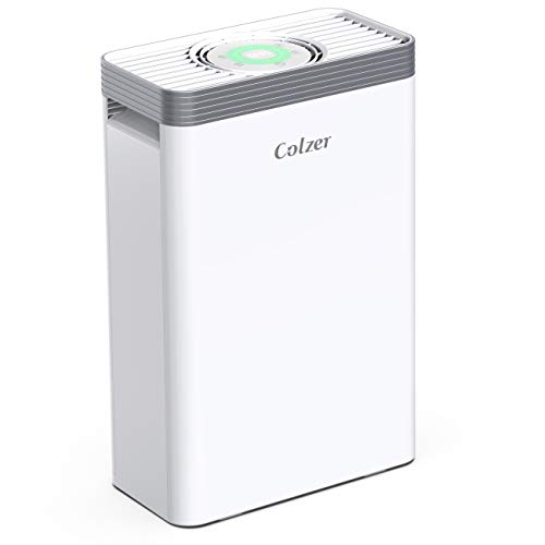 Big Save! COLZER Air Purifier with True HEPA Air Filter, Air Purifier for Bedroom, for Spaces Up to ...