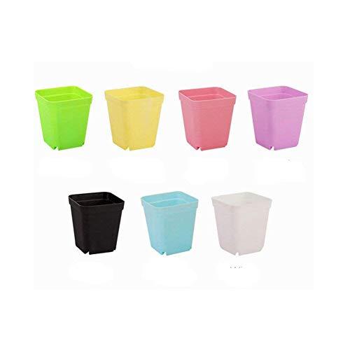 Laconile -  Confezione da 14 vasi quadrati in plastica con...