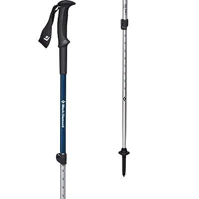 Black Diamond Equipment - Trail Sport 3 Trek Poles - Kingfisher