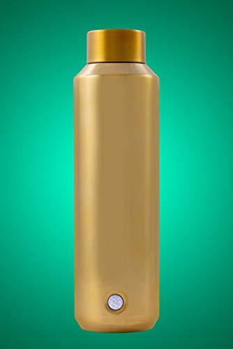 Starbucks 2019 Holiday Season Botella de agua de oro (20 oz)