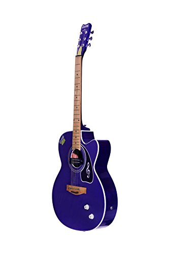Givson Venus Super Special, 6-Strings, Semi-Electric Guitar, Right-Handed, Purple, With Guitar Cover/Bag