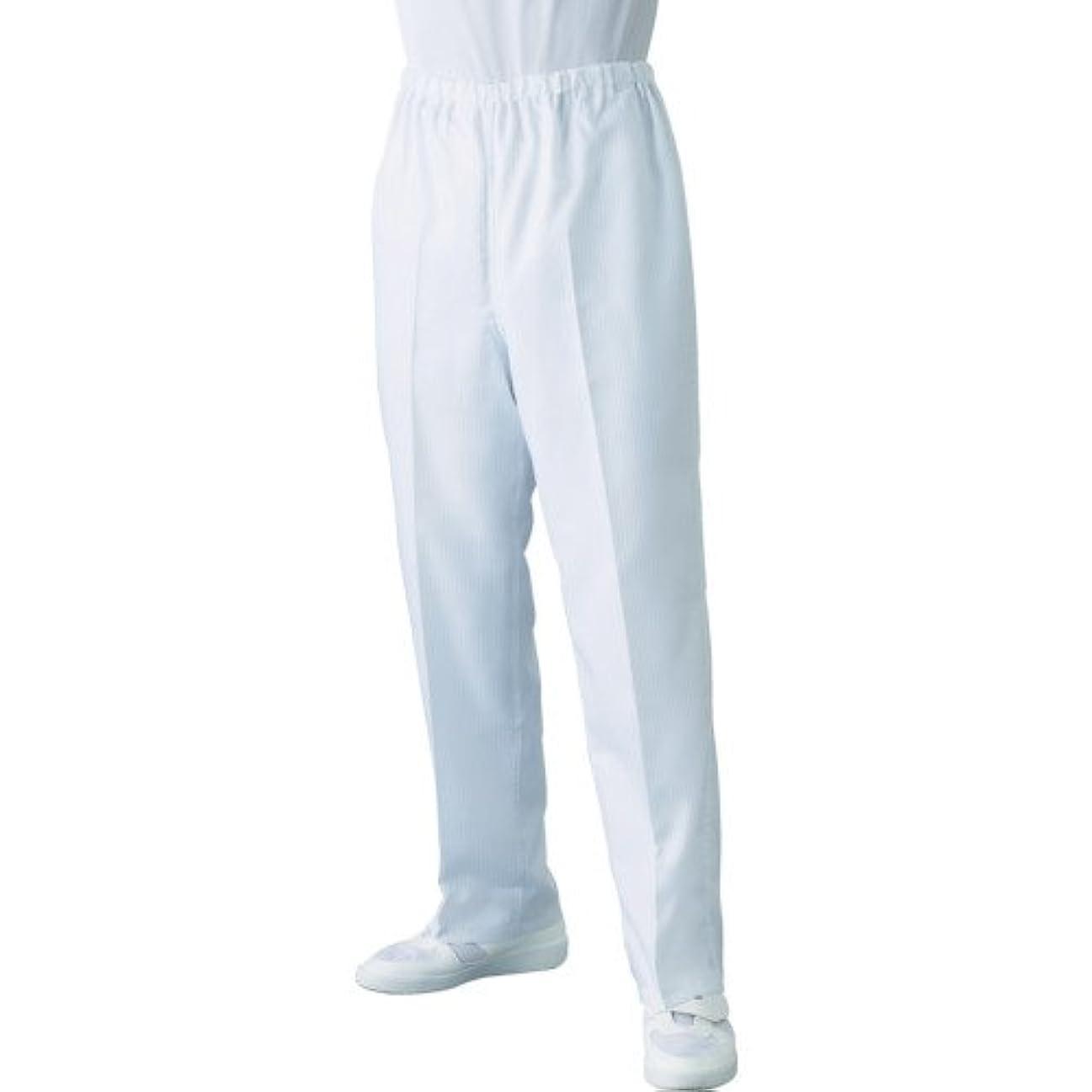 寝てる背景受け入れるLinet TriApex クリーンスーツ パンツ LL FH349C01LL