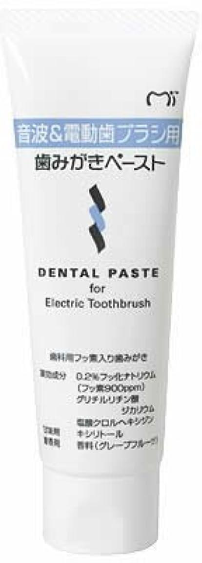 ポジティブウェイトレス緩やかな音波&電動歯ブラシ用 歯磨きペースト