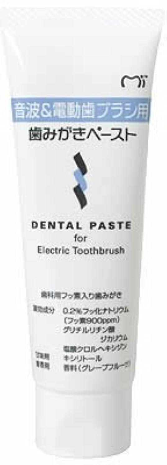 チョコレートカスケードクラッシュ音波&電動歯ブラシ用 歯磨きペースト