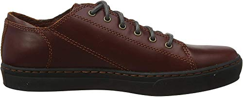 Timberland Herren Adventure 2.0 Cupsole Modern Oxford Halbschuhe, Braun (Medium Brown Full Grain), 41.5 EU