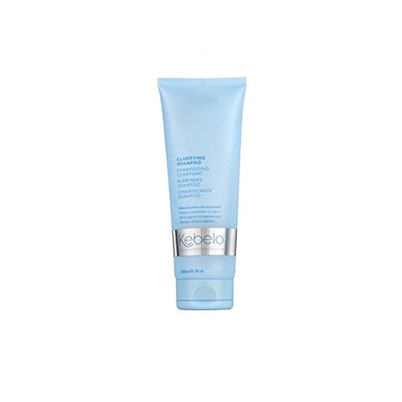 委任急降下前提条件明確化シャンプー(250ミリリットル) x2 - Kebelo Clarifying Shampoo (250ml) (Pack of 2) [並行輸入品]