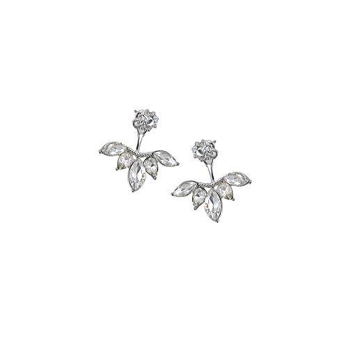 FANKUNYIZHOUSHI - 1 par de Pendientes de Cristal de Doble Cara con Cierre a presión en la Parte Delantera y Trasera y 2 en 1 con circonitas cúbicas para Mujer y niña (Plata)