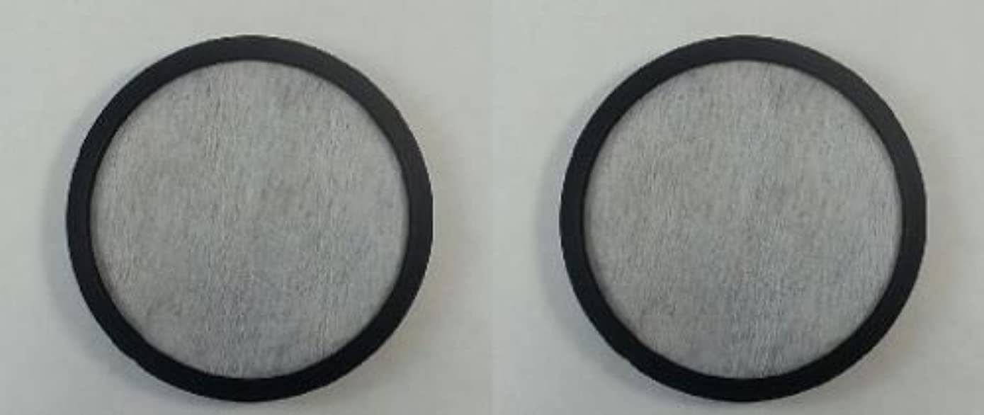 FYL (2) Water Filter Disc for Mr. Coffee WFFPDQ-10NP - NEW