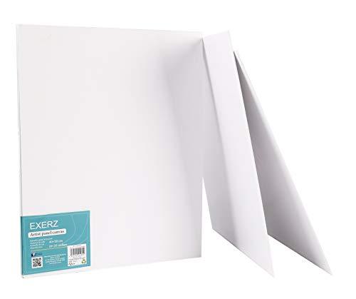 Exerz Paneles de Lienzos 50x40cm Paquete de 6 /280GSM/ 100% Algodón/Color Blanco/Triple Preparado/Libre de Acido/Hebra Media/ 0,3cm de Espesor
