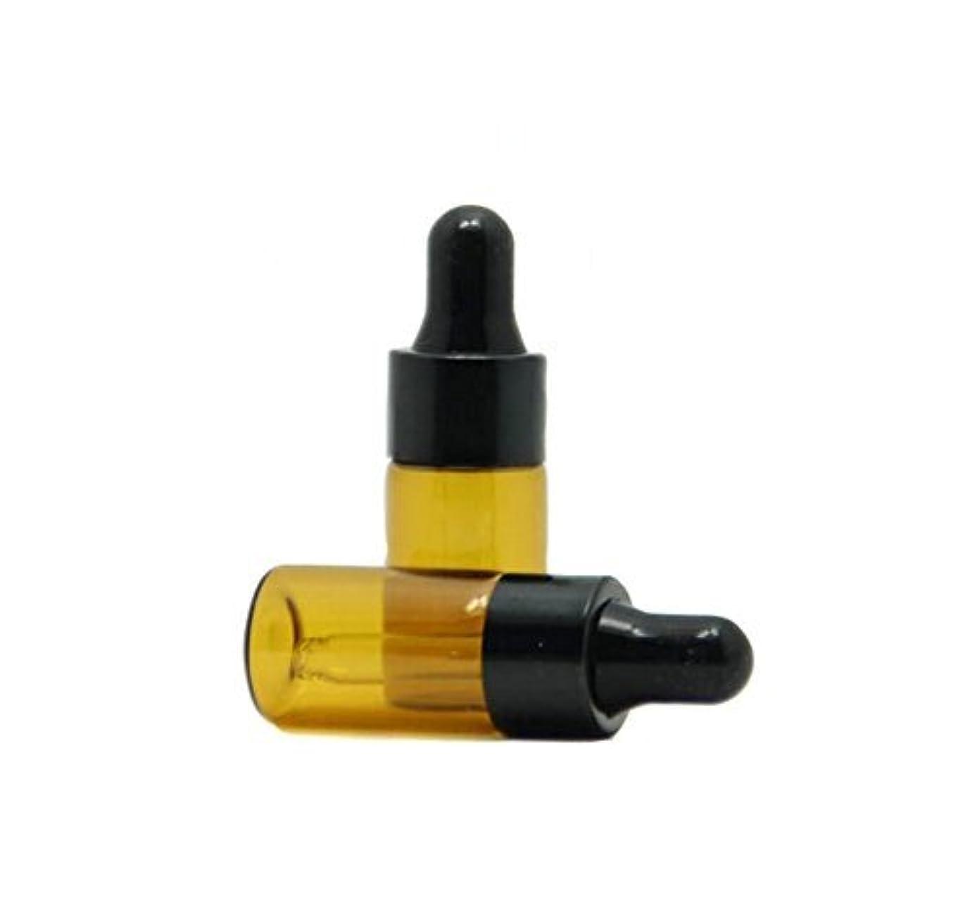 デコードする快い囲い3ml 15 Pcs Refillable Mini Amber Glass Essential Oil Bottles Dropper Bottles Vials With Eyed Dropper For Aromatherapy Eye Dropper Cosmetics (black cap) [並行輸入品]