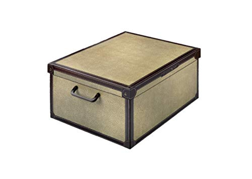 Kanguru BAULETTO TAPIRUS Caja de Almacenamiento en cartòn Lavatelli, Modelo, Media 32x42x21cm, Mediana