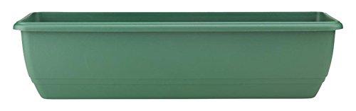 Stewart Rettangolare Finestra Box Fiori in Vaso Verde piattino 50 cm