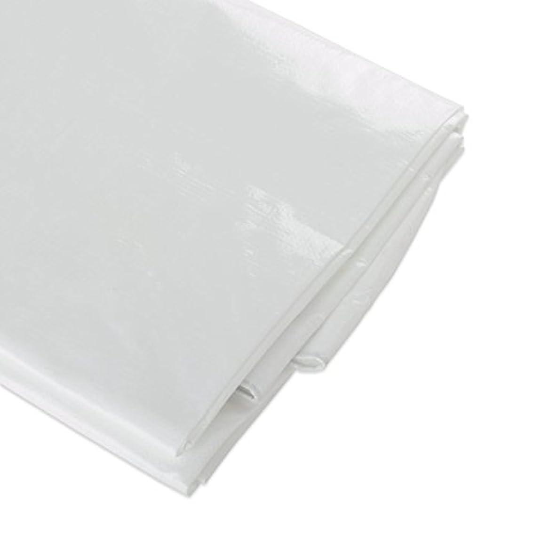 ATE Pro. USA 96304 Heavy-Duty Tarpaulin, 6 by 10-Feet, White