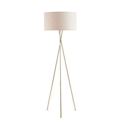 Lampes de chevet Lampadaire Creative Métal Lampe Vertical Simple Salon Chambre Table De Chevet Lampe Moderne Table Basse Étude Décoration Lampe (Color : Beige, Size : 50 * 160cm)