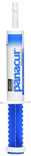 SCHERING/INTERVET D PANACUR Dewormer Horse Paste 10%