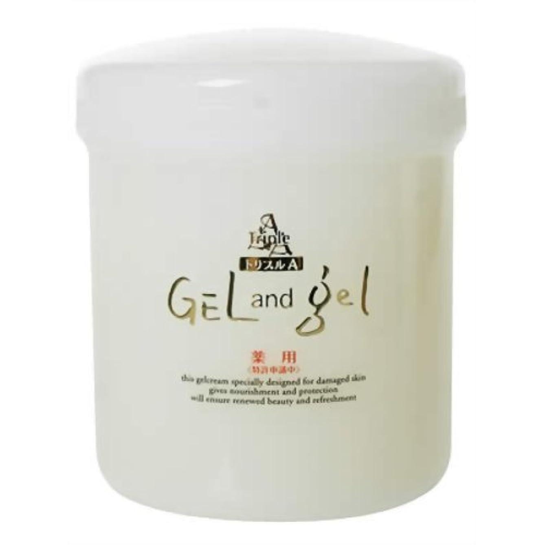 散るスプーン対処する薬用トリプルA ゲル&ゲル クリーム 500g