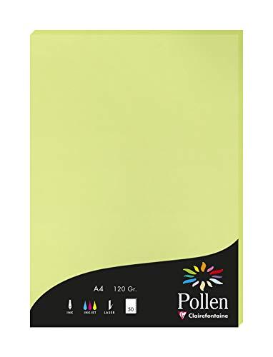 Clairefontaine 44205C Packung mit 50 Karten Pollen 120g, DIN A4, 21 x 29,7cm, Knospengrün