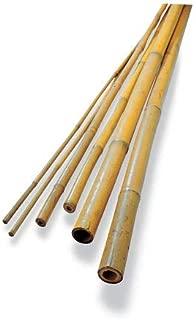Gardener's Supply Company #4 Bamboo Poles, Set of 25