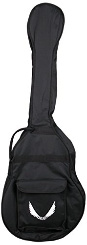 dean acoustic bass case - 3