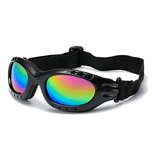 Gafas de esquí a prueba de viento Gafas de la motocicleta Gafas deportivas al aire libre Gafas de esquí Gafas a prueba de polvo Equitación Gafas de sol Ojo Ware (Color : 03)