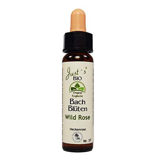 Wild Rose Nr. 37 Just´s BIO Bachblüten 10 ml Hundsrose Original englische BIO Bachblüten Blütentherapie für Mensch und Tier