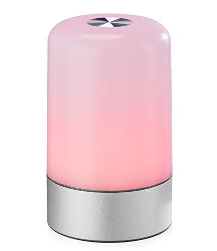 MIAROZ Lámpara de Mesa, Regulable Lámpara de Noche de Atmósfera con Sensor de Tacto, Lámpara de Tabla de Decoración con Modo RGB y Luz Blanca Caliente, 256 Luces de Color(Silver)